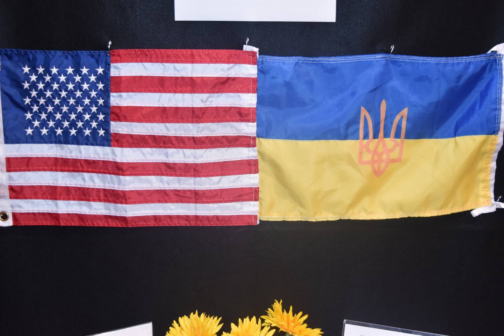 usa and ukraine flags